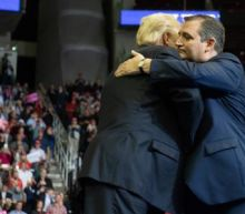 'Beautiful Ted': Trump and Cruz bury the hatchet as midterm anxiety mounts
