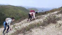 《美女郊遊遊》路線三尖之首蚺蛇尖丨手腳並用已是登頂最易路線?