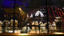 Interdiction des animaux sauvages dans les cirques itinérants : les professionnels inquiets