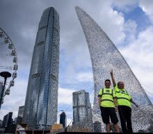 Hong Kong shark art protests at fin trade