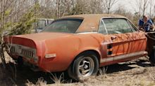 Ford Shelby prototype barn find is 'the discovery of a lifetime'