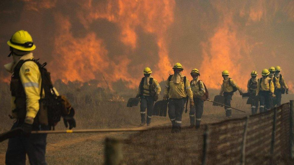 Table Mountain fire: Historic buildings destroyed in Cape Town