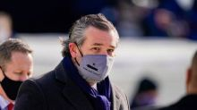 Lincoln Project co-founder says committee will go after Cruz now Trump has left office