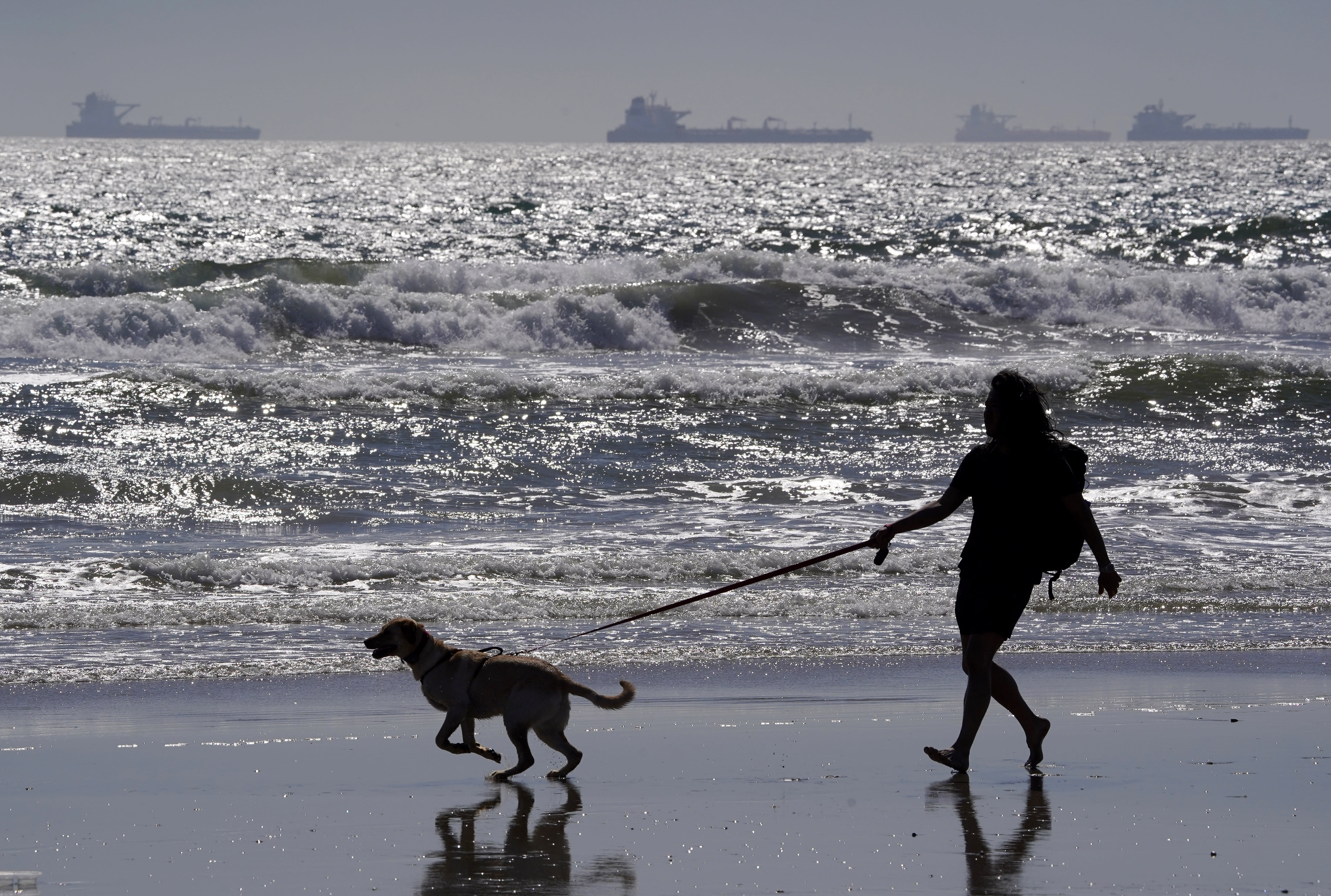 A man walks a dog as oil tankers sit offshore Wednesday, April 22, 2020, in Huntington Beach, Calif. About three dozen tankers are parked between Long Beach and the San Francisco Bay Area with nowhere to go due to lack of demand and nowhere to store the oil. (AP Photo/Mark J. Terrill)