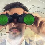 A guide to pot stocks: What you need to know to invest in cannabis companies