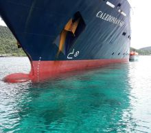 Indonesia increases estimate for cruise ship reef damage