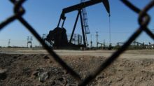 OPEC decision: Good news from the oil cartel gives government time to consider options