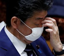 Japan's government is providing 2 masks per household to combat coronavirus, and people are making memes roasting the measure
