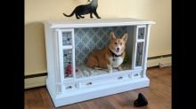 Crafty Corgi owners transform retro TV into chic dog bed