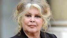 """Brigitte Bardot chama população da Ilha da Reunião de """"degenerada"""""""