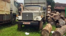 Uganda reverses forest destruction by inviting in ... loggers