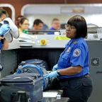 Government shutdown: Passenger takes gun through airport security check onto international flight