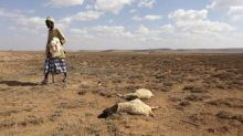 South Africa weather service says El Nino may return in spring