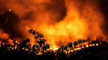 Trump Administration Turns Down California's Request For Wildfire Disaster Assistance
