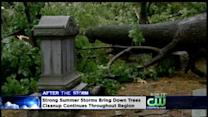 Cleanup Continues After Fierce Storms
