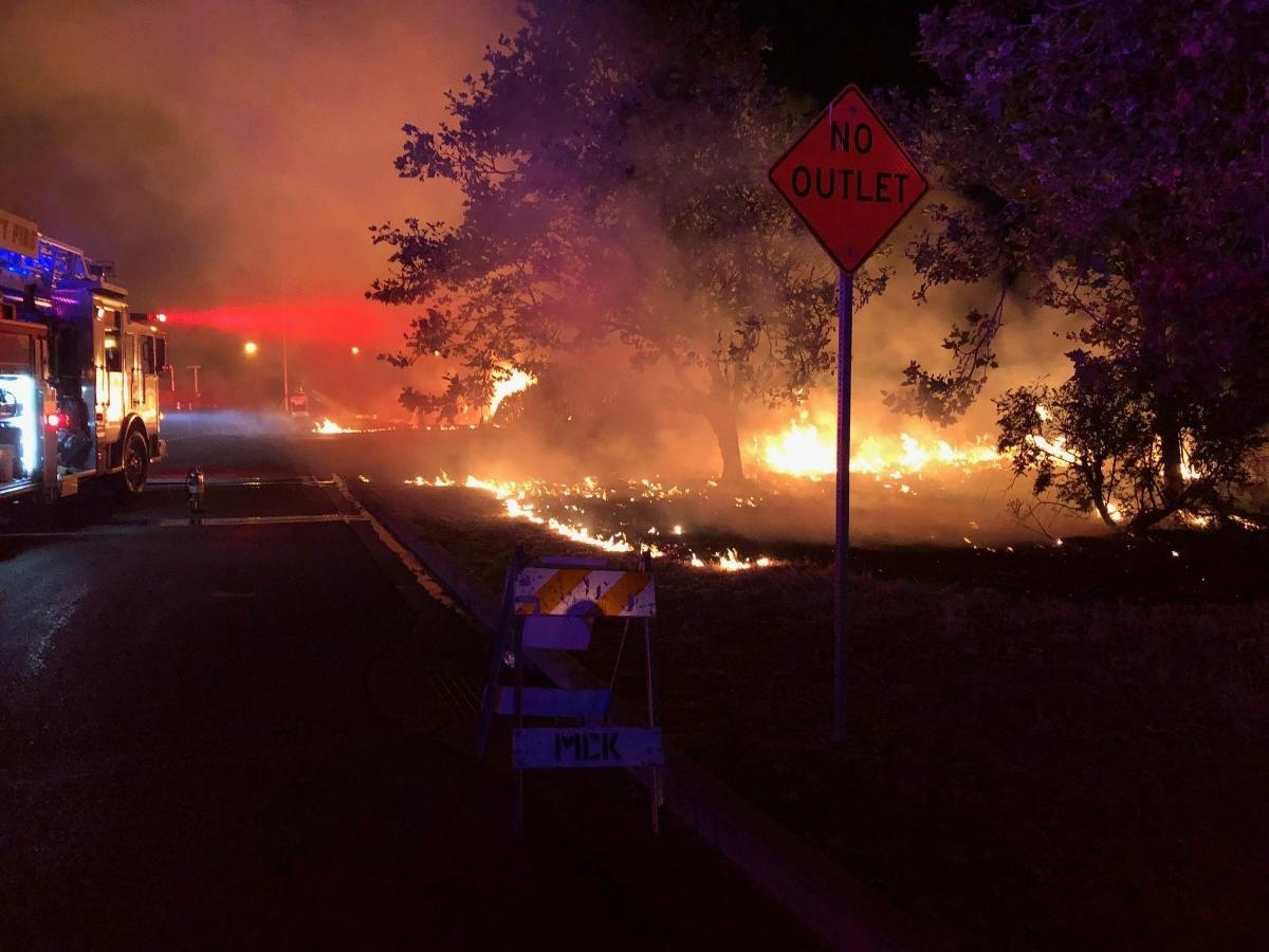 A brush fire in Newark was one of dozens reported overnight in Alameda County.