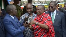 Tanzania, minatore-milionario trova una terza pietra di tanzanite