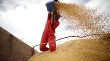 Venda antecipada de soja 2020/21 do Brasil atinge 39,8% e supera média, diz Safras