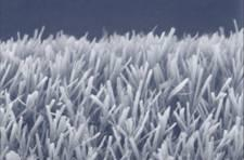 Peptide nanotube 'forest' coating could mean self-cleaning windows, more efficient batteries, Alzheimer's cure, world peace