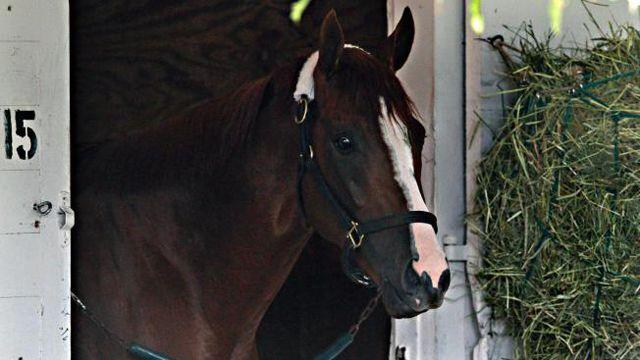 California Chrome set to race for Triple Crown