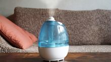 Was bringen Luftbefeuchter in der Wohnung?