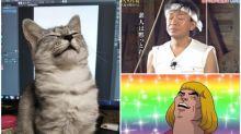 日本喵星人「潛力表情圖」 網民出手改圖Twitter熱傳