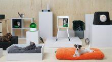 Ikea lancia una nuova linea di mobili per cani e gatti