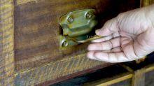 Mann aus Bremen macht sensationellen Fund in alter Schublade