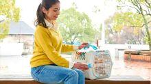 Brinquedos, ração e itens para pets com até 30% de desconto