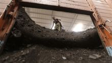 India's annual coal demand rises 9.1% to nearly 1 billion tonnes: minister