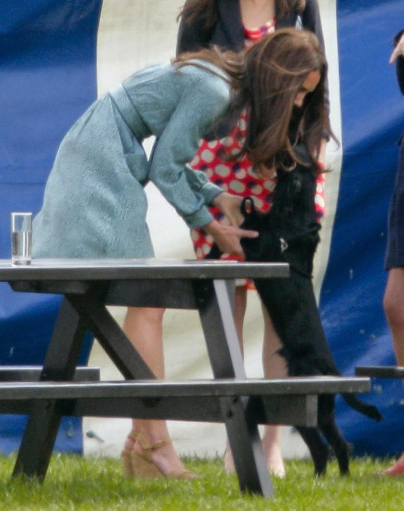 Ok, so maybe this photo is more about the puppy-love than the dress, but the Duchess still looks chic, even while playing with her and Wills' pup, Lupo!