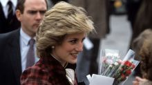 Here's why so many people still believe Princess Diana's death was a conspiracy