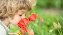 Comment notre cerveau interprète-t-il les odeurs ?