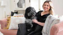 Kelly Clarkson's new Wayfair line is full of French-inspired goods