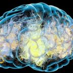 Bad dementia genes can be overcome through healthy living, study finds
