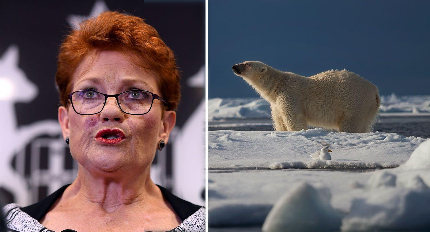 Humans not to blame for climate change, Pauline Hanson says