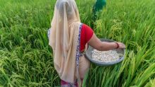 Agriculture Reforms: Ignore Political Rhetoric, Embrace Prosperity Economics
