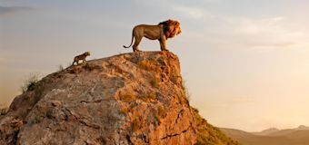 'The Lion King': Exclusive photos and intel