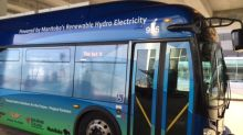Add up to 20 electric buses to Winnipeg Transit fleet, report recommends