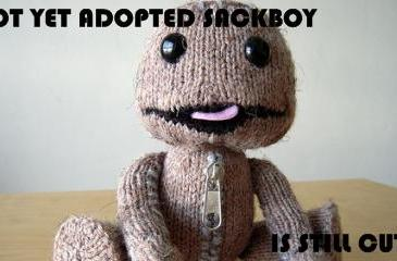 Philosony: Give a sackboy a level and he'll play for a day...