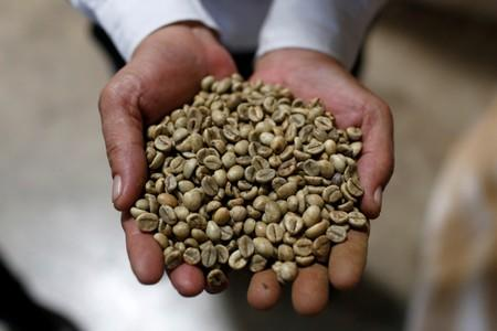 Vietnam domestic coffee prices hit four-month lows; trading thin in Indonesia