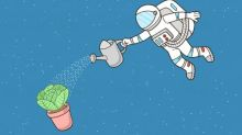 Gardens of the galaxy: can you grow vegetables on Mars?
