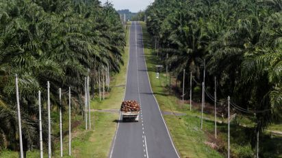 Kazakhstan eyes role as distribution hub for Malaysian palm oil to Russia, Eurasian Union, rep says
