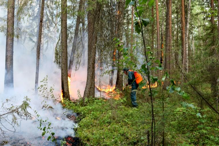 Russia said Wednesday it was battling blazes over 40,000 hectares (AFP Photo/Handout)