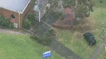 Girl critical after tree branch falls on children