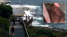 Warning for pet owners after 'disgusting' find on popular coastal walk