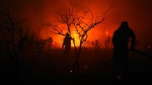 In Argentina's ranch heartlands, dry winds fan blazes as firefighters battle for control