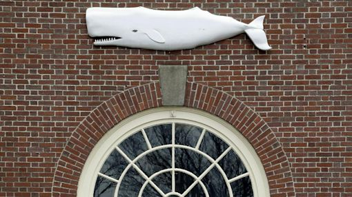 Did your ancestor hunt whales? Museum database offers clues