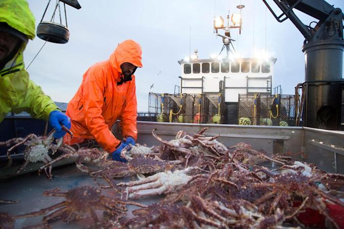 Discovery Channel (Deadliest Catch)