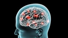 Zapping the Brain at Certain Times Improves Memory